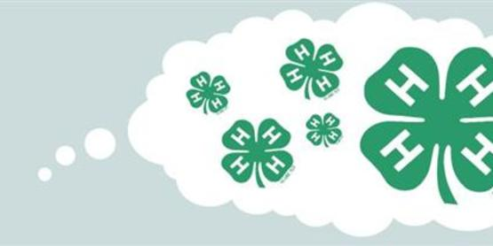 Join us and find out what 4-H has to offer.