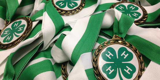 4-H Youth Achievement Day
