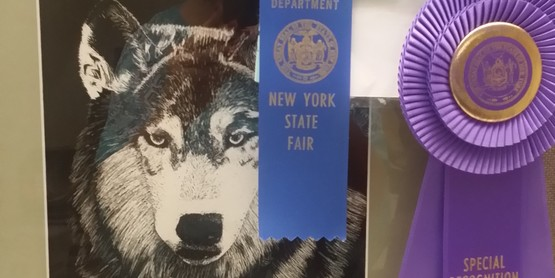 Rosette received by Simonne DeWalt for her Wolf drawing