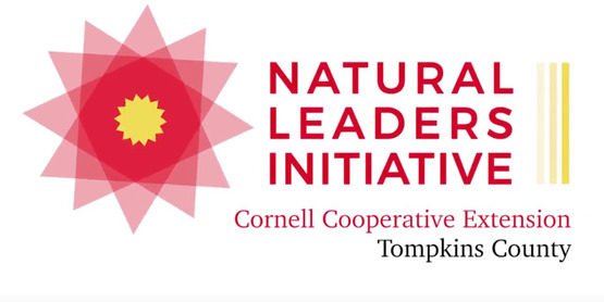 new (2018) Natural Leaders Initiative logo