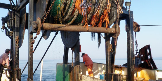 fisheries trawler