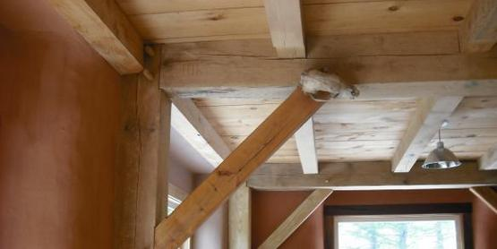 Contact Name: Scott Hannan Address: 5491 Coyote Road, Trumansburg, NY 14886   To be used in: Local Lumber Fact Sheet