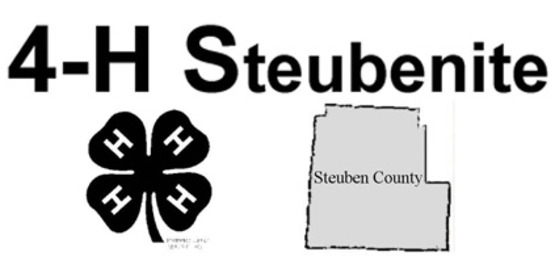Steubenite logo