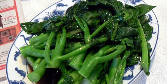 Chinese broccoli Brassica oleracea
