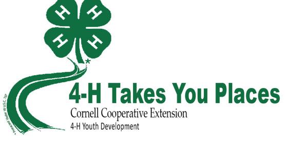 State 4-H Public Presentations
