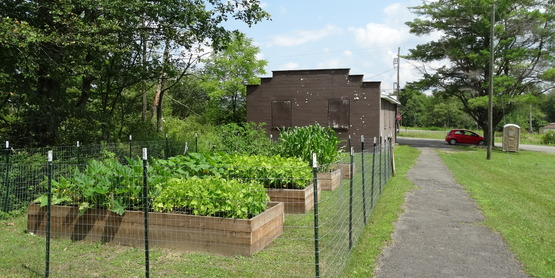 McDonough Community Gardens