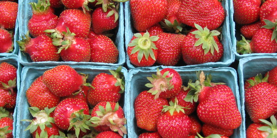 Delicious local strawberries are available at farmers' markets in the summer.