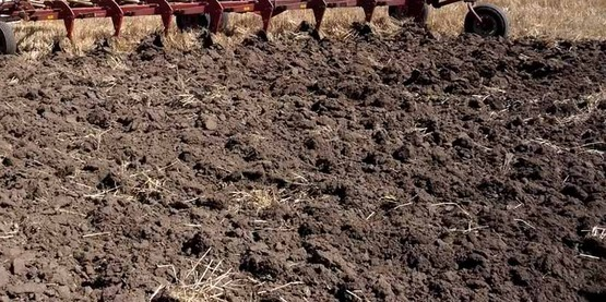 close-up photo of soil after tilling