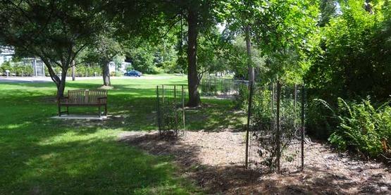 Rural Beautification Grant, Forest Home Pocket Park