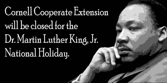 CLOSED for Dr. Martin Luther King, Jr. Day