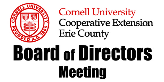 Board of Directors Meeting Schedule