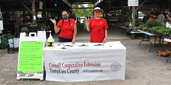 CCE Horticulture Educator Mila Fournier (left) and Master Gardener Volunteer Tracy McLellan (right) greet visitors at entry table to 2020 Plant Sale at Ithaca Farmers Market.