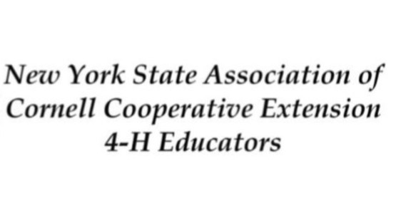 4-H NYS