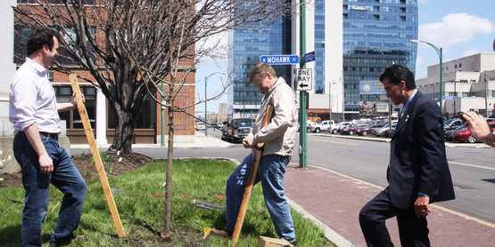 Tree Planting at W. Mohawk