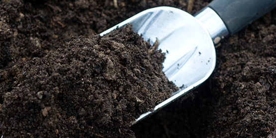 Cornell cooperative extension soil clinic for Soil 4 youth