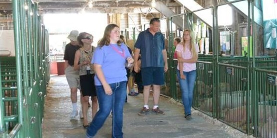 Liz Comstock gives a tour of the Hog Barn at the 2015 Chautauqua County Fair.