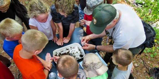 Upper Delaware BioBlitz Family Day