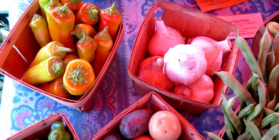 Find recommended varieties of vegetables that grow well in our area!