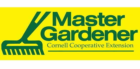 Master Gardener logo, 800x400 in yellow & green