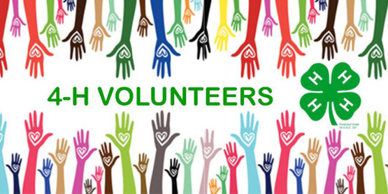 Volunteer with 4-H!