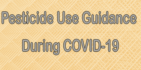 Pesticide Use Guidance During COVID-19