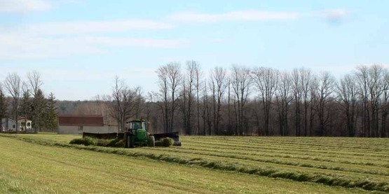 Cutting Hay in Clinton County, NY