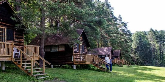 Rustic cabins at the Arnot Forest