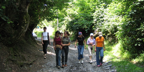 Walk with us on the Catharine Valley Trail!