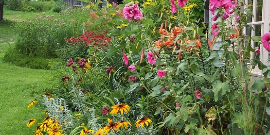 Locustbrae Perennial Gardens - Tour and Talk