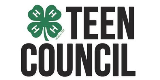 4-H Teen Council... A Program for Teens