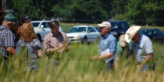 Hudson Valley Small Grains Field Day 2014