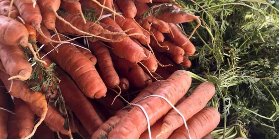 Organic carrots and Brussels sprout stalks, at the Jack London Square Farmers' Market in Oakland, CA, on Sunday, August 9, 2015. USDA photo by Lance Cheung.