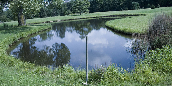 Shovel and Pond