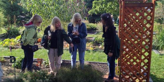 Master Gardeners enjoy garden tours together