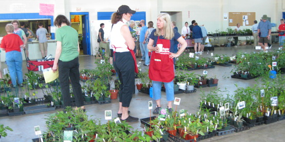 Master Gardeners assisting customers at the May plant sale