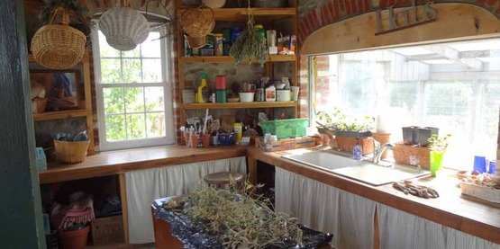 potting shed  in Filios Garden, 2016 Open Days Garden Tour site