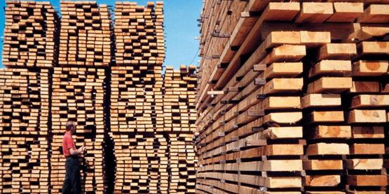 Lumber sales are a potential market.