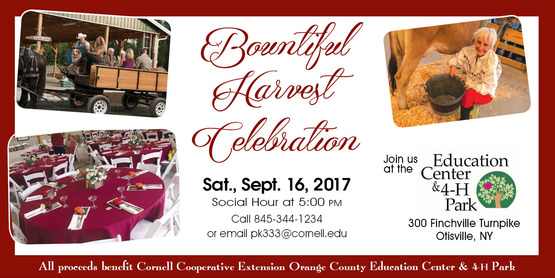 Bountiful Harvest Celebration
