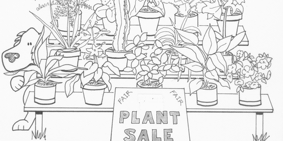 Master Gardener Plant Sale at the Fair