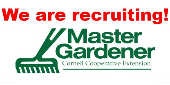Do you like gardening? Consider becoming a Master Gardener Volunteer!