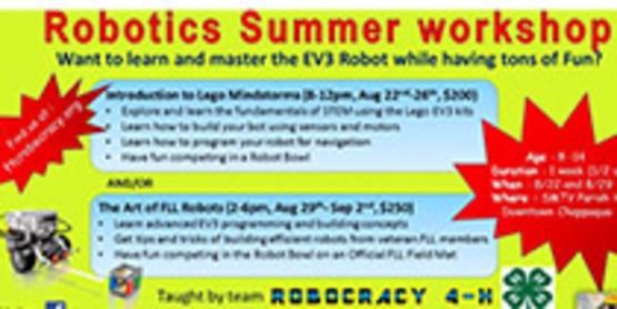 ROBOTICS SUMMER WORKSHOP