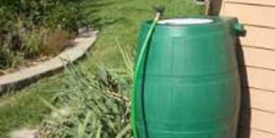 Learn how to set up your own rainwater harvesting system!