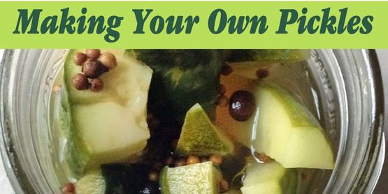 Making Your Own Pickles