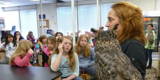 Vet Science, learning about raptors