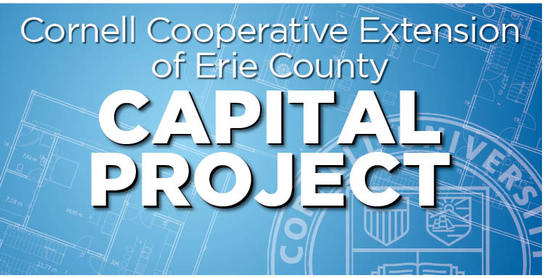 Updated Capital Project