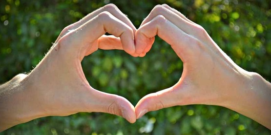 2 human hands making a heart shape