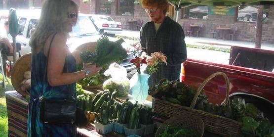 Dewitt Farmers' Market stand