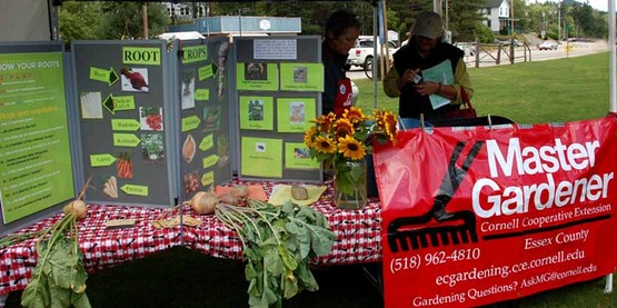Our Master Gardener booth & display