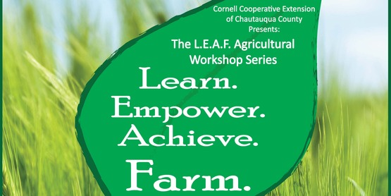 Growing Medicinal and Culinary Herbs (L.E.A.F. Workshop Series)