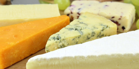 Cheese Tasting and Evaluation Workshop